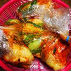 【ADIOまかない】手作り白菜キムチ