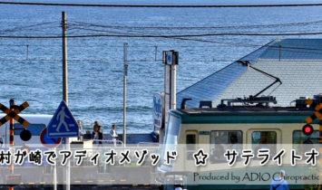 稲村ガ崎・どんぐり工房施術再開のお知らせ